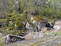 Актовский каньон 2.JPG