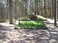 Братская могила в Сосновой Поляне под Зеленогорском.JPG