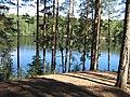 ЗЕЛЕНОГОРСК - Дружинное(Чёртово) озеро (1).jpg