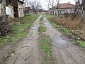 Улица Стара планина в с. Ново село, Видинско.jpg