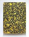 זיגוטה בין האטב של יגאל ליאיא קוסומו (נקודות שחור צהוב).jpg