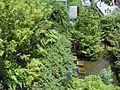 アクロス福岡 (Acros Fukuoka) - panoramio (2).jpg