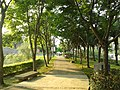 客文館 生態公園 - panoramio.jpg