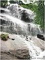 山泉泛滥 - panoramio (1).jpg