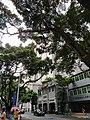 广州市海珠区人才服务管理办公室大楼 2.jpg