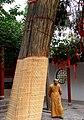 洛阳白马寺 - panoramio (4).jpg