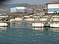 海上养殖 - panoramio.jpg