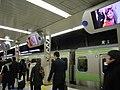 渋谷駅ステーションチャンネル (3964991233).jpg