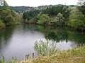溜池(大池) - panoramio.jpg