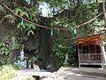 滝の観音の滝 - panoramio.jpg