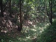 滝山城の空堀