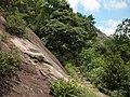 积翠庵登山道 - Jicui Nunnery Trail - 2011.07 - panoramio.jpg