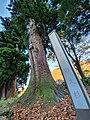 諏訪社 Suwa shrine 8.jpg