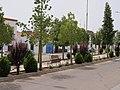 06360 Fuente del Maestre, Badajoz, Spain - panoramio.jpg