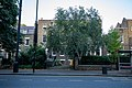 123 And 125, Kennington Road Se11.jpg