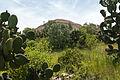 15-07-13-Teotihuacán-RalfR-N3S 9270.jpg