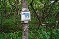 180727 Nasu Heisei-no-mori Forest Nasu Japan09.JPG
