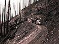 1939. Log truck loaded with burned logs. Meehan operation. Tillamook Burn, Oregon. (34888145821).jpg