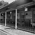 1966 Domaine expérimentale de La Sapinière à Bourges-17-cliche Jean-Joseph Weber.jpg