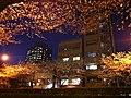 1 Chome Hiroo, Shibuya-ku, Tōkyō-to 150-0012, Japan - panoramio (1).jpg