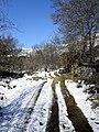 2011-03-06 Camino nevado - panoramio.jpg
