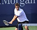 2013 US Open (Tennis) - Albert Ramos (9657546325).jpg