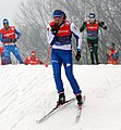2018-01-12 FIS-Skiweltcup Dresden (Training) by Sandro Halank–055.jpg