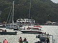2019 Scotland Island Pittwater NSW Christmas Day pooch race 2.jpg