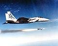 318th Fighter Interceptor Squadron - F-15 - McChord AFB.jpg
