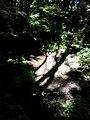 35-211-5004 Казавчинські скелі Лютинська 175.jpg