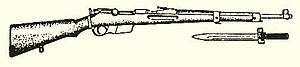 35M rifle, illustration.jpg