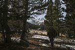 3rd Battalion 4th Marine Regiment takes to the mountains 161022-M-HF454-116.jpg