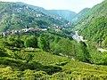 53690 Güneyce-İkizdere-Rize, Turkey - panoramio (3).jpg