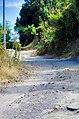 61 route de la scupiccia.jpg