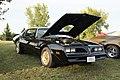 78 Pontiac Trans Am (9845164503).jpg