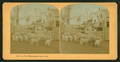 A New Hampshire farm yard, from Robert N. Dennis collection of stereoscopic views 7.png