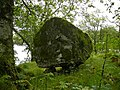 A large rock boulder perched on three stones - geograph.org.uk - 1640148.jpg