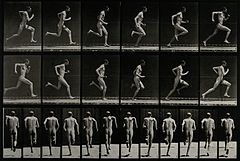 A man sprinting. Photogravure after Eadweard Muybridge, 1887 Wellcome V0048637.jpg