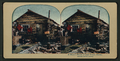 A miner's home at Cape Nome, Alaska, from Robert N. Dennis collection of stereoscopic views 2.png