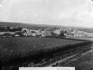 A view of Tregaron from Pen-pica