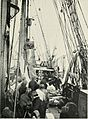 A voyage to the arctic in the whaler Aurora (1911) (14597411340).jpg