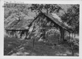 Abandoned log house. Border of Newton and McDonald counties - NARA - 283768.tif