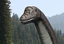 阿比杜斯龙属