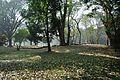 Acharya Jagadish Chandra Bose Indian Botanic Garden - Howrah 2011-01-08 9749.JPG