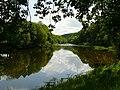 Afon Gwy - River Wye - geograph.org.uk - 1375842.jpg