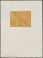Agriornis striaticollis - 1851 - Print - Iconographia Zoologica - Special Collections University of Amsterdam - UBA01 IZ16500209.tif