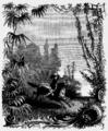 Aimard - Le Grand Chef des Aucas, 1889, illust 40.png