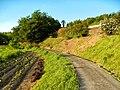 Akagimachi Miyada, Shibukawa, Gunma Prefecture 379-1121, Japan - panoramio (12).jpg