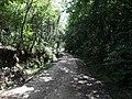 Alameda Cândido Brasil Moro - Palma - Santa Maria, foto 11 (sentido S-N).jpg - panoramio.jpg