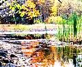 Allan's Mill pond, October, 2009 (5020638821).jpg